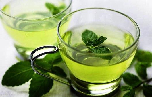Мята в чай польза и вред